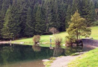 Pesca a mosca al lago dei Caprioli \ Fly fishing at Caprioli Lake \ Pêche à la mouche au lac Caprioli